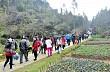 Dịp Tết Dương Lịch, Lào Cai Đón Hơn 50.000 Lượt Du Khách