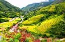 Chương Trình Sapa - Hà Khẩu (Trung Quốc) 2 Ngày 3 Đêm