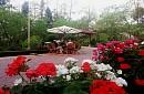 Khách Sạn Sapa Garden And Breakfast