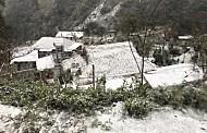 Cập Nhật Thời Tiết Sapa Ngày 26/1: Băng Tan, Tuyết Ngừng Rơi