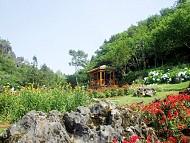 Chương trình ngắm hoa nở trong núi bốn mùa