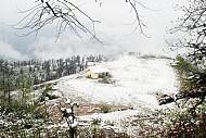 Ngắm mưa đá tuyết rơi đầu xuân