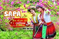 TOUR HÀ NỘI - SAPA - CÁT CÁT - HÀM RỒNG - CÁP TREO FANSIPAN Tết 2018