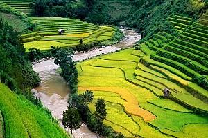 Tour du lịch Sapa 3N2D: Hàm Rồng - Cát Cát - Lao Chải - Tản Van